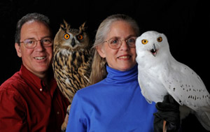 Marcia and Mark Wilson - Owls of the World